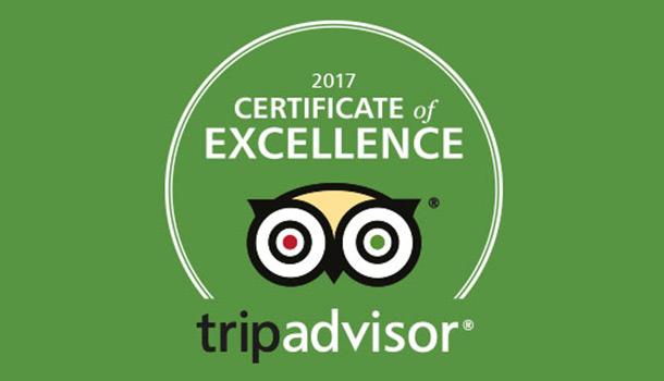 Image result for tripadvisor certificate of excellence 2017 logo